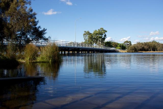 Shelly Bridge